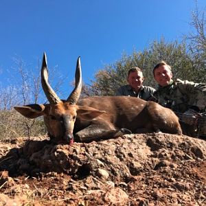 South Africa Bow Hunt Cape Bushbuck