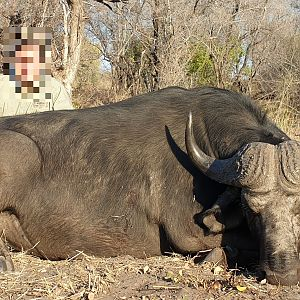 Cape Buffalo Non-exportable Hunt