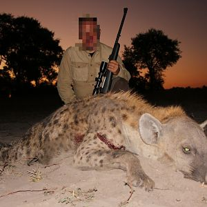 Spotted Hyena Hunting