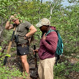 Tracking Blue Wildebeest in South Africa