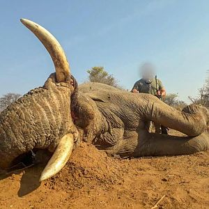 Hunt Elephant in South Africa