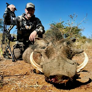 South Africa Bow Hunting Warthog