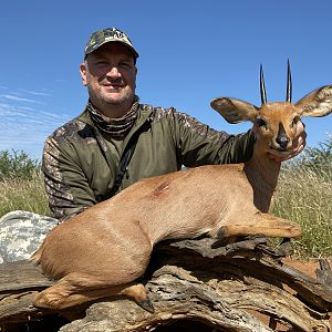 Hunt Steenbok in South Africa