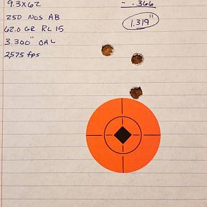 250 grain Accubond. 62 gr Range Shots