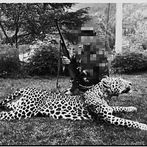 Hunting Leopard in India