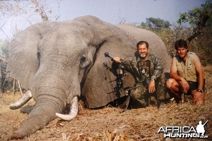 Elephant Bow Hunt Hunting