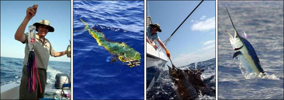 marlin-fishing-03.jpg