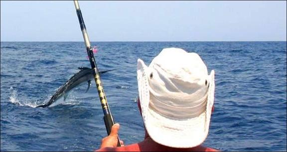 marlin-fishing-12.jpg