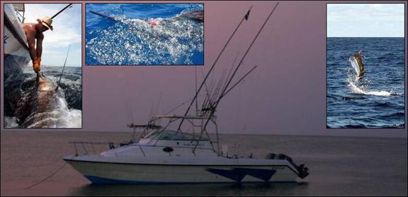 marlin-fishing-17.jpg