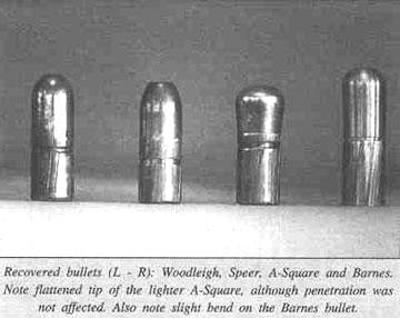 bullets1.jpg
