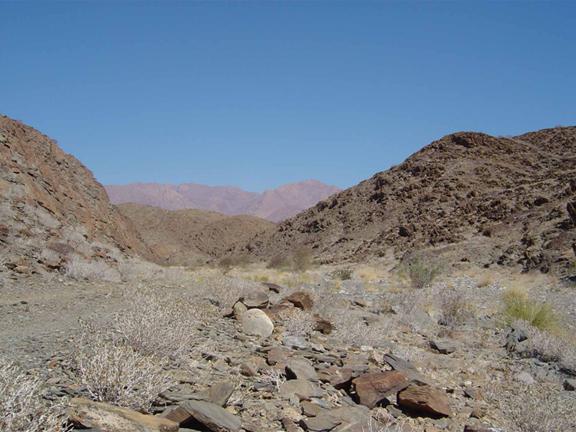 hunting-namibia-11.jpg