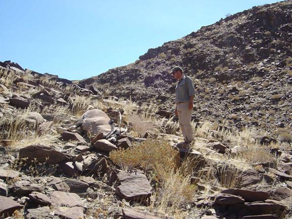 hunting-namibia-12.jpg