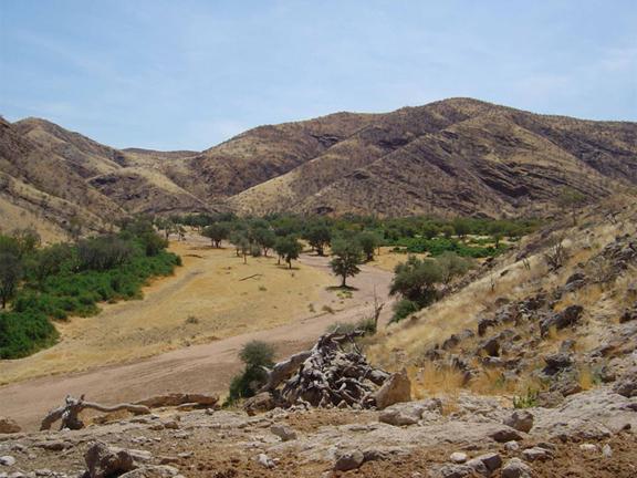 hunting-namibia-19.jpg