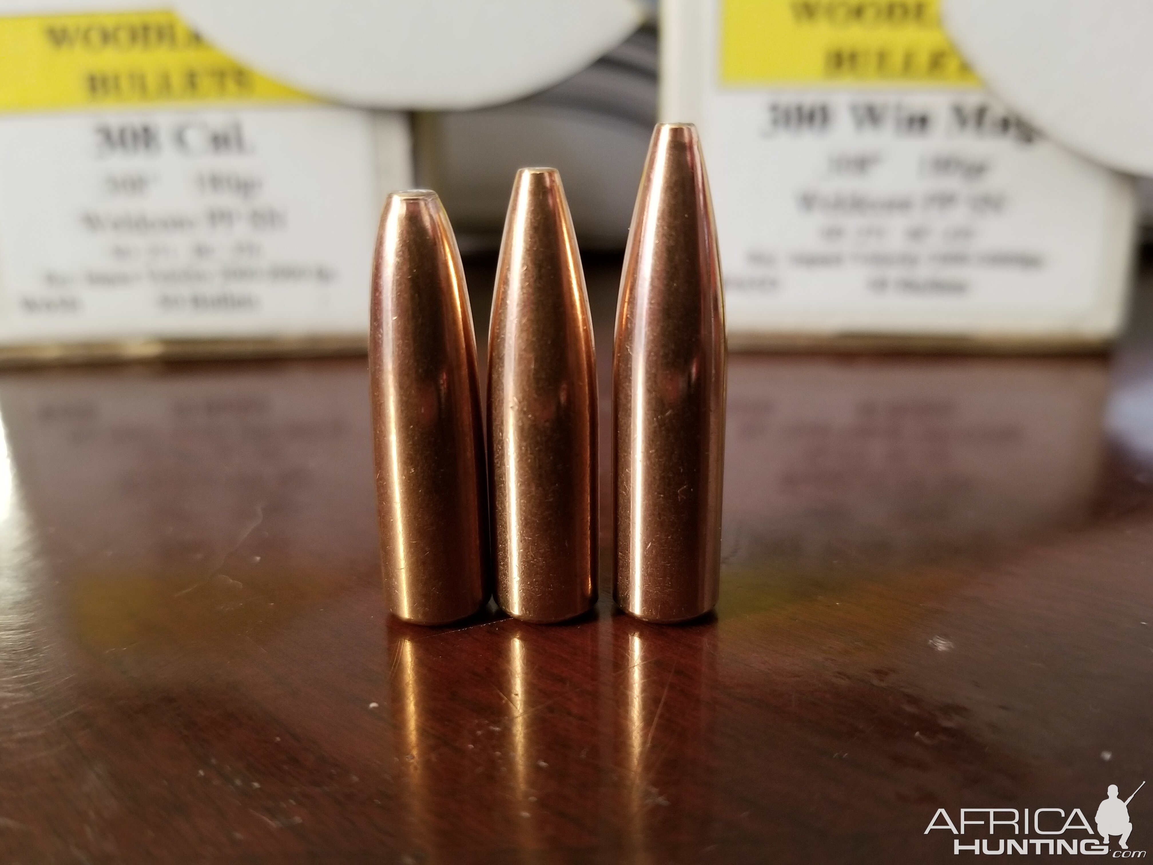 180gr, 180gr for Win Mag, 200gr Woodleigh Bullets