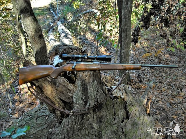 7x57 in a Mauser Rifle