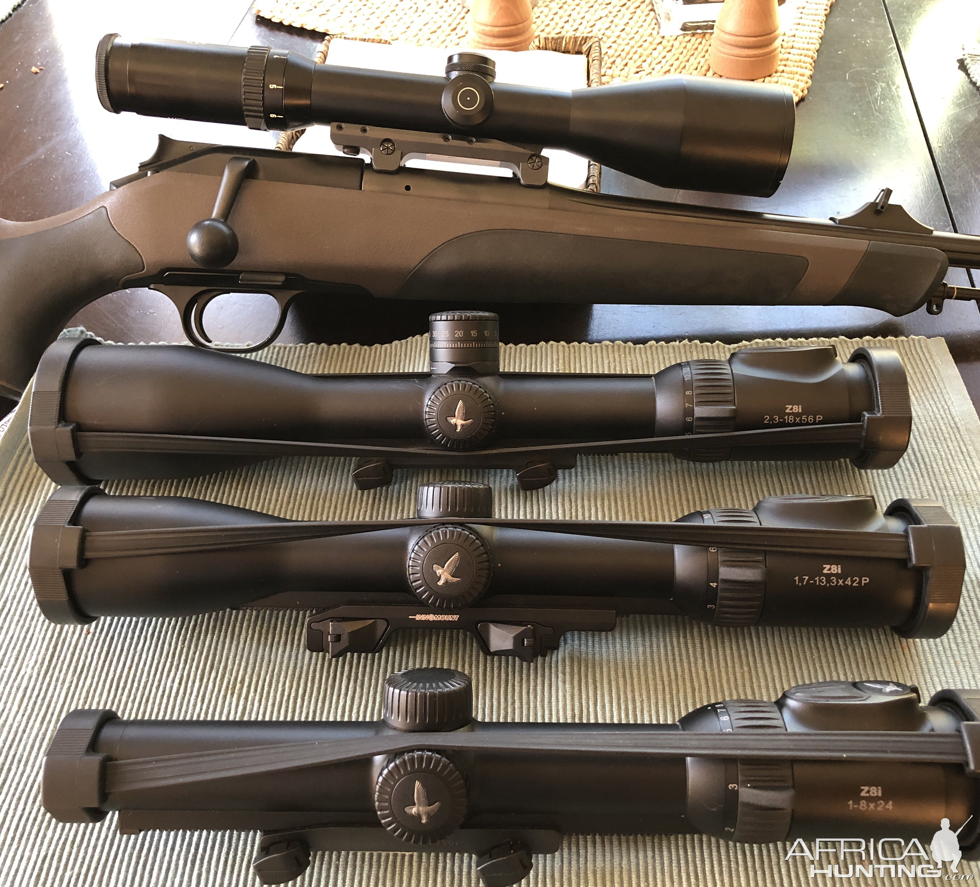 Blaser Scope & Swarovski's