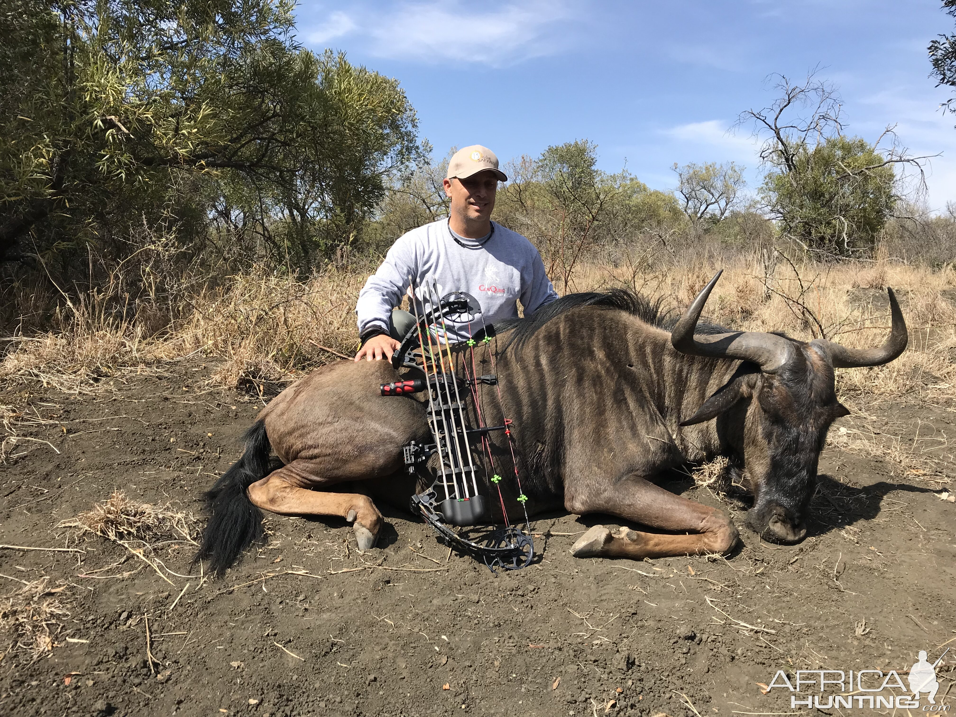 Bow Hunting Blue Wildebeest in South Africa