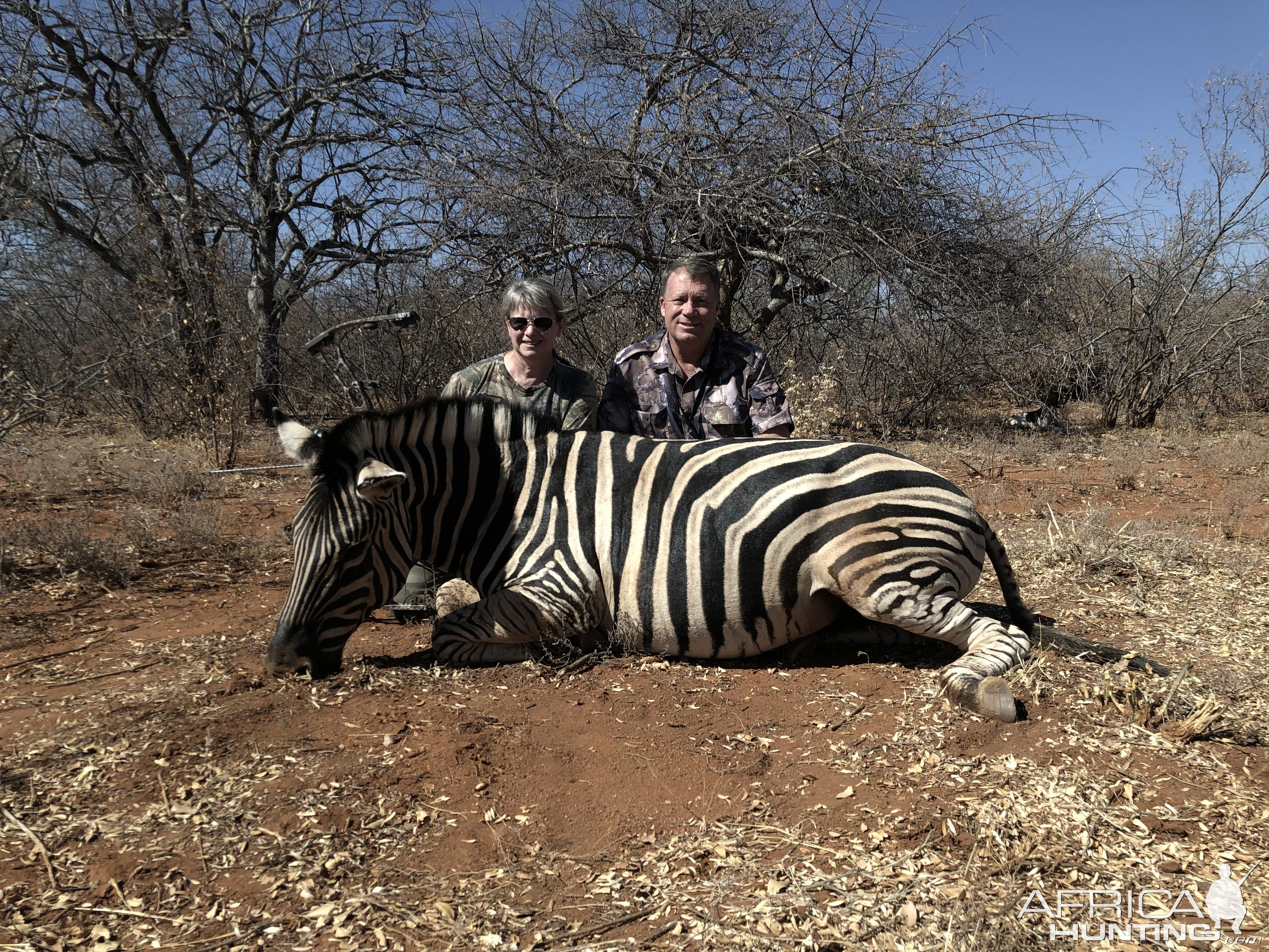Bow Hunting Burchell's Plain Zebra in South Africa