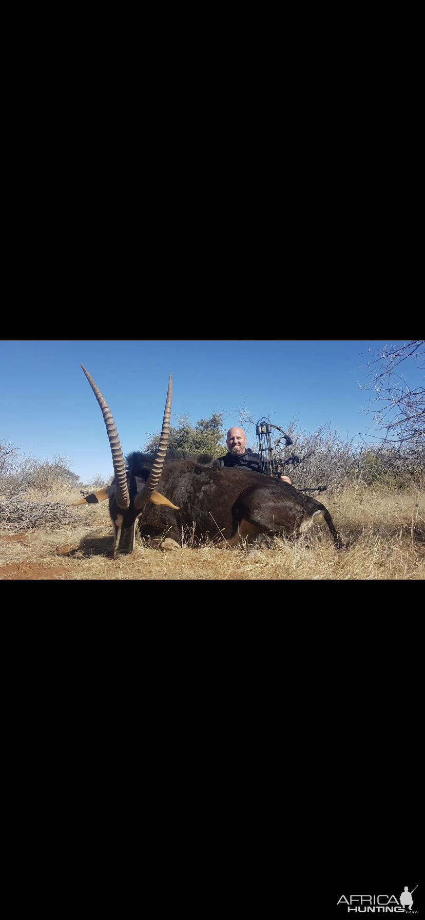 Bow Hunting Sable Antelope in South Africa