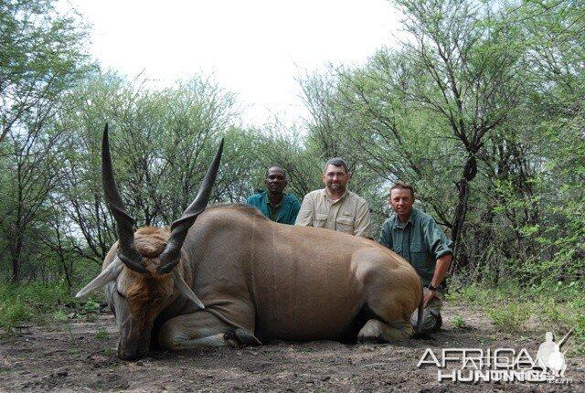Cape Eland hunt in Limpopo RSA - 36 1/2 inches
