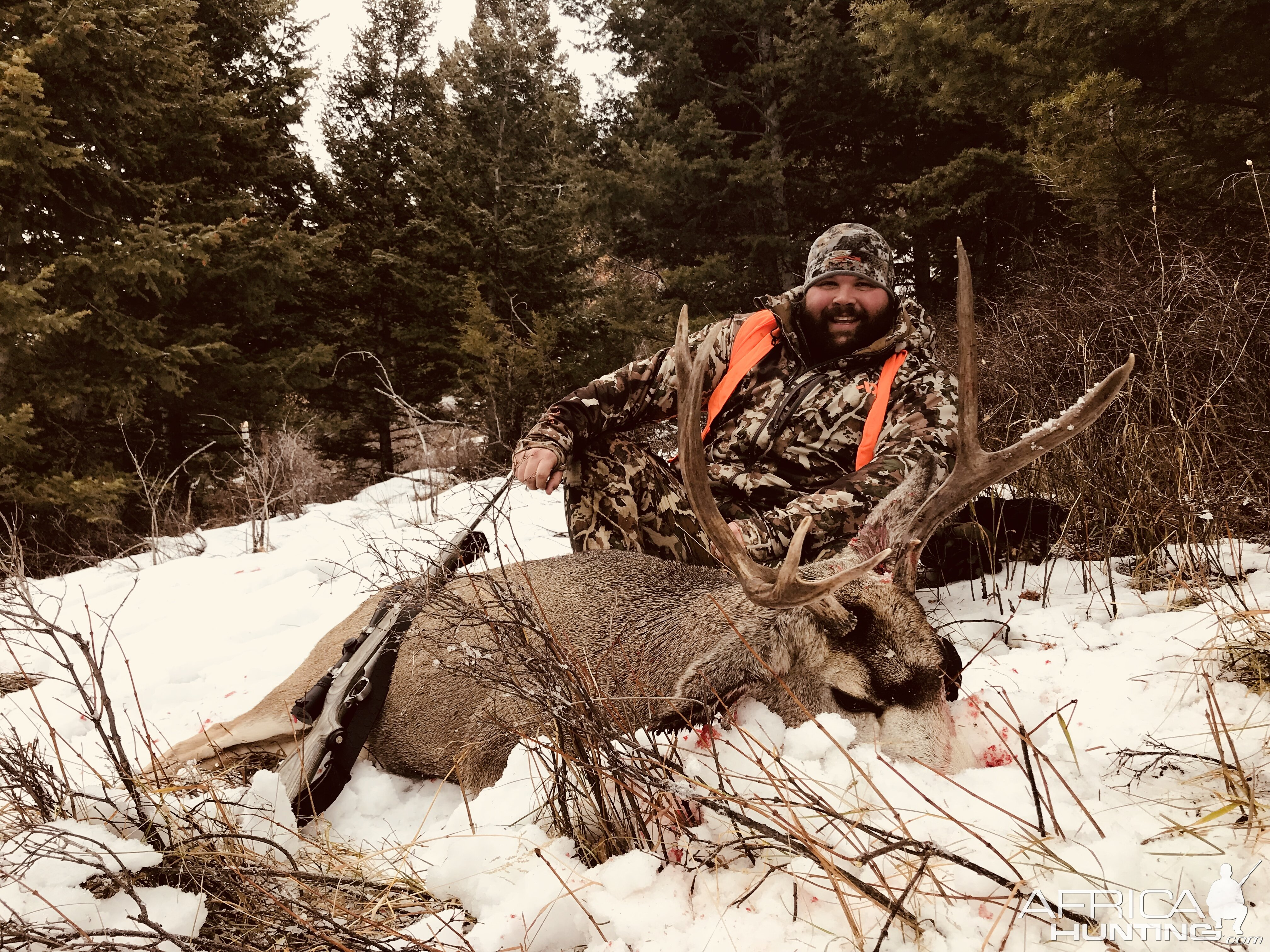 Deer Hunt in Montana