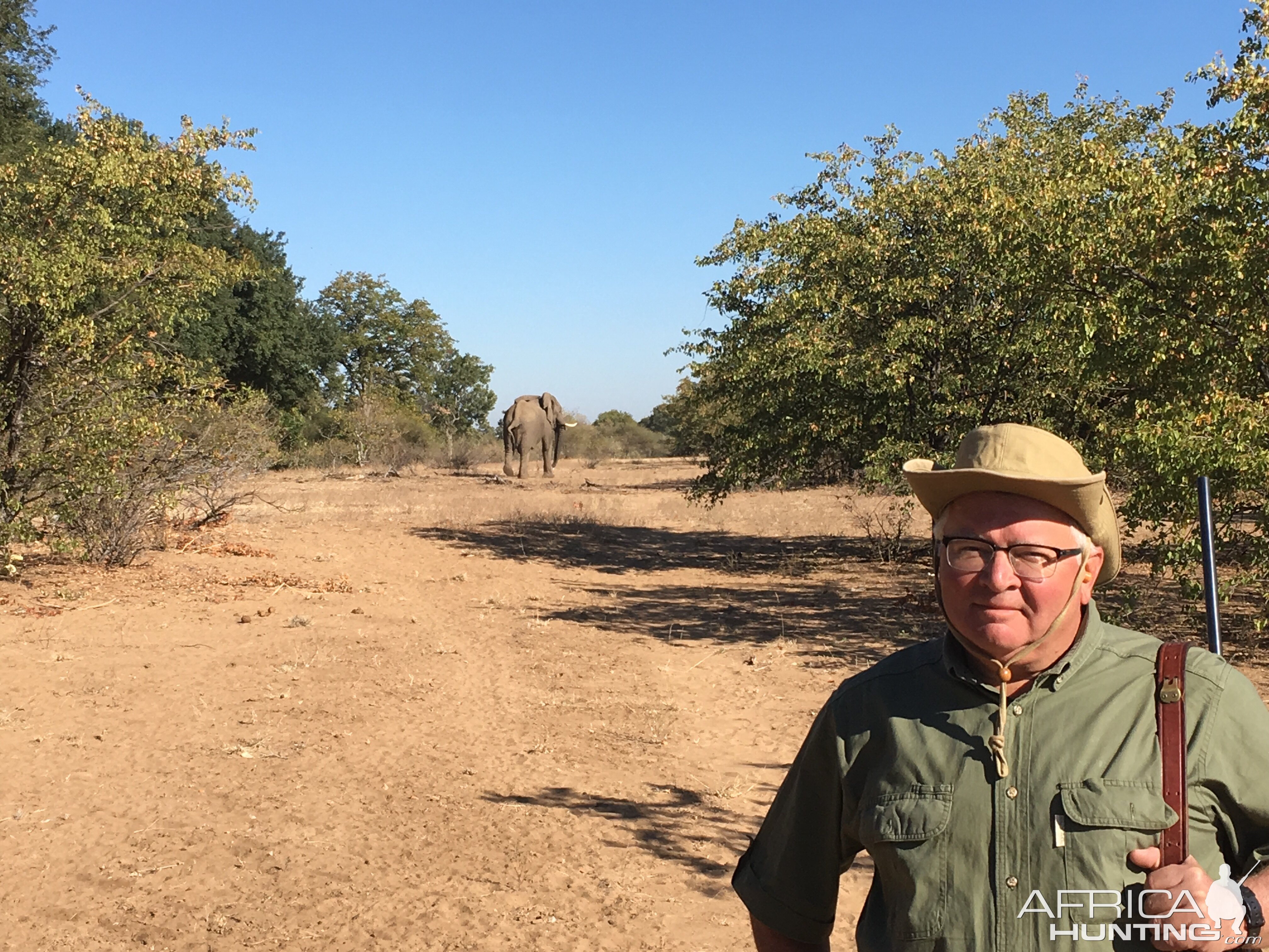 Elephant encounter while hunting