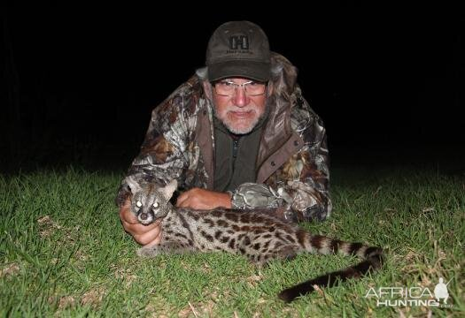 Genet Cat Hunting Sunset Safaris