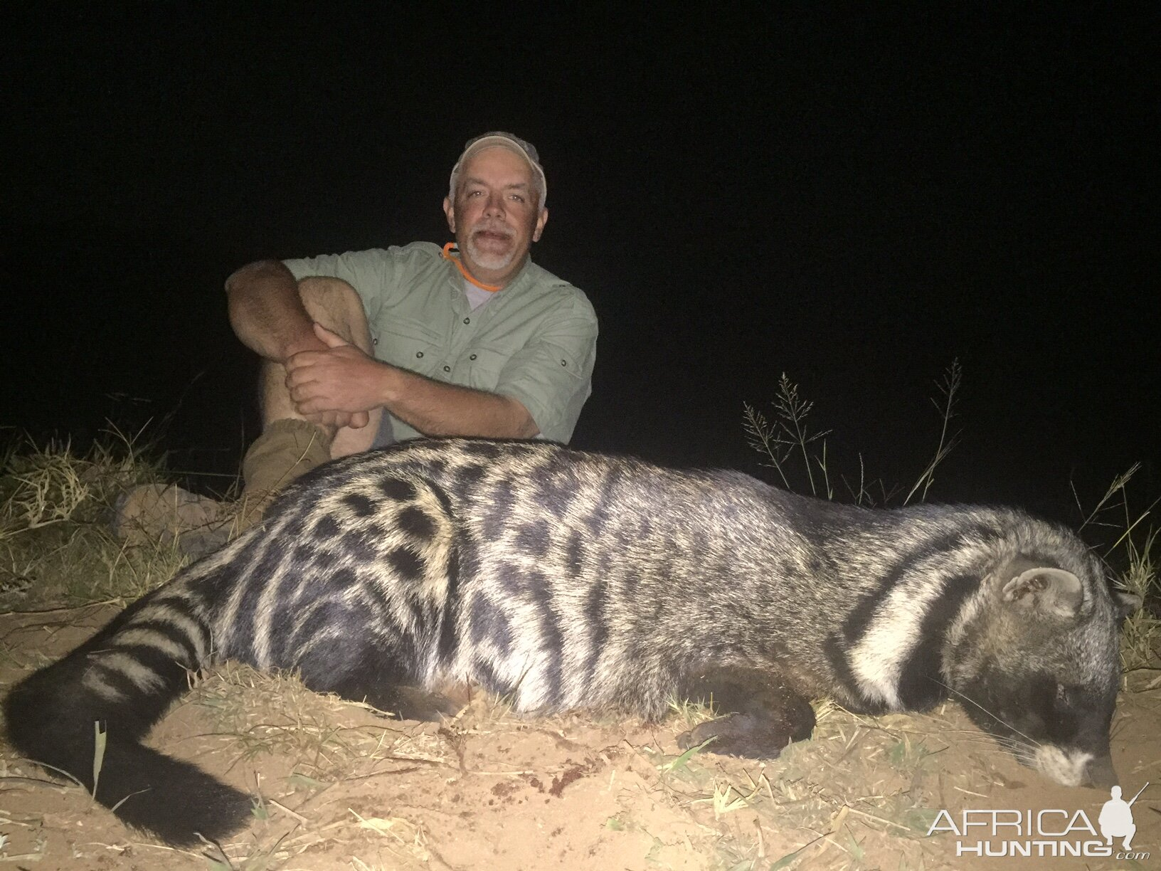 Hunt South Africa African Civet Hunting