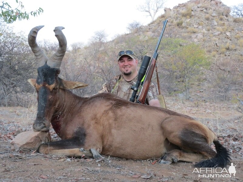 Hunting Namibia Red Hartebeest
