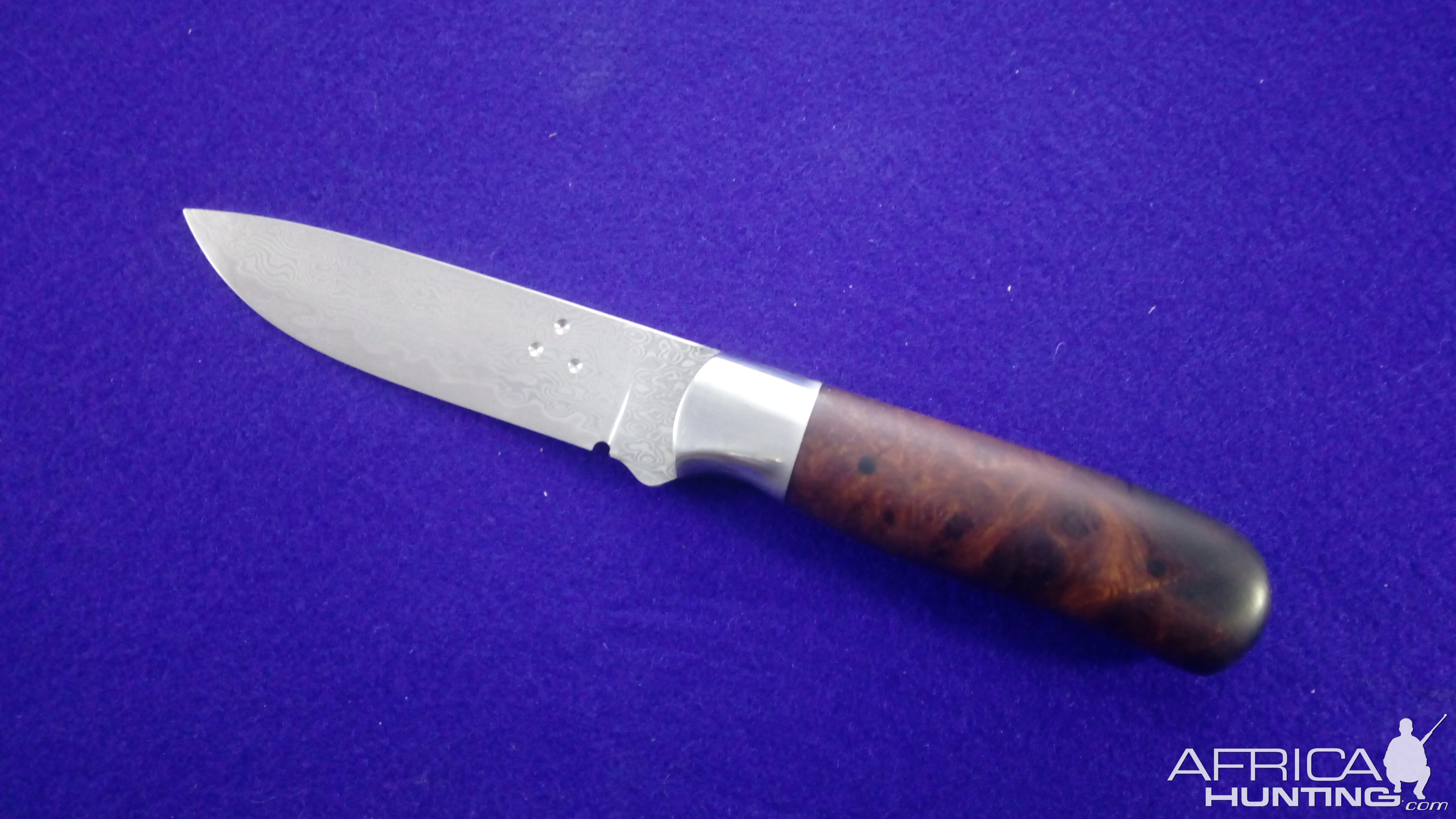 Hybrid Hunter Knife with Desert Ironwood