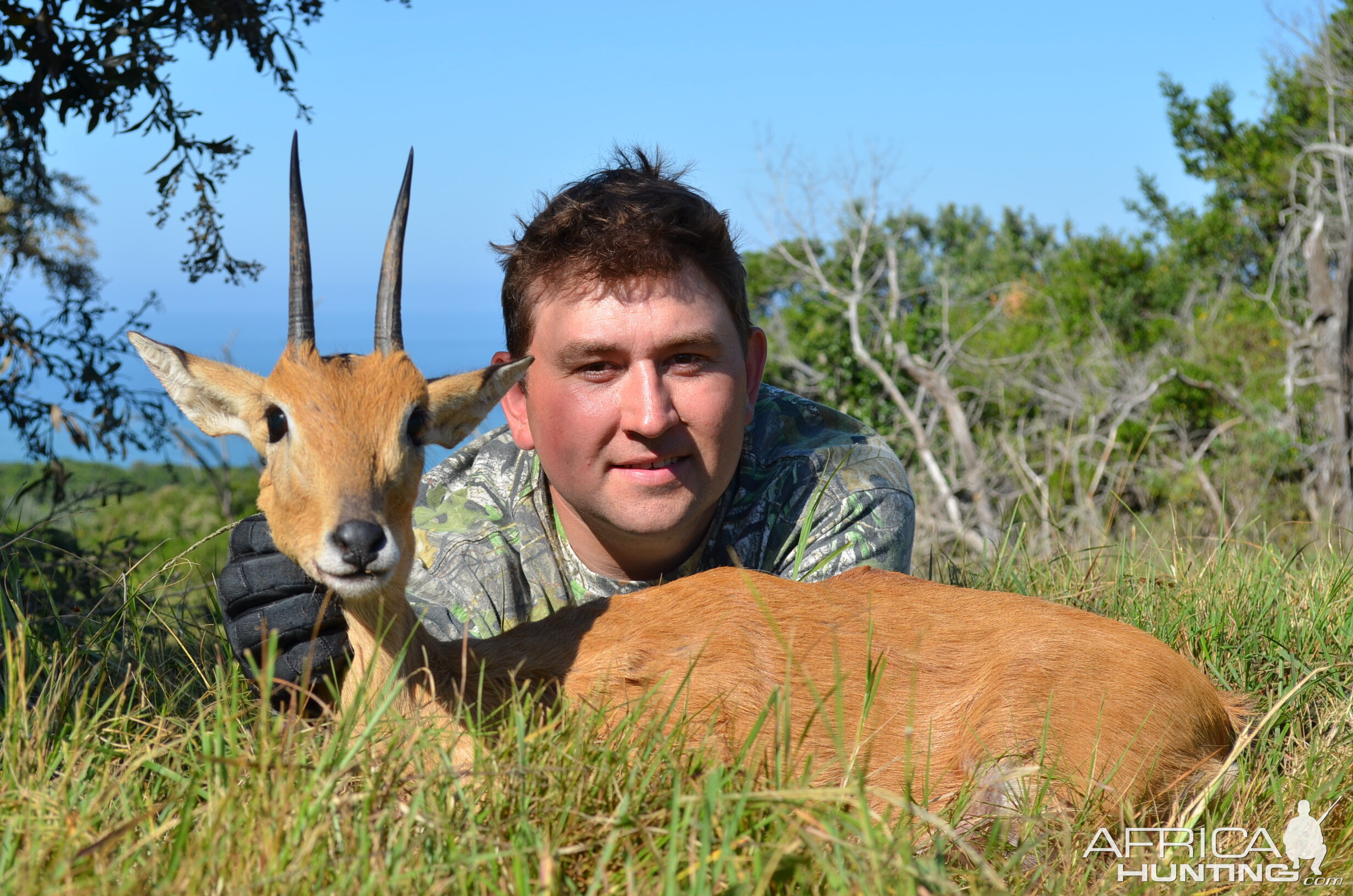 Oribi Hunting South Africa