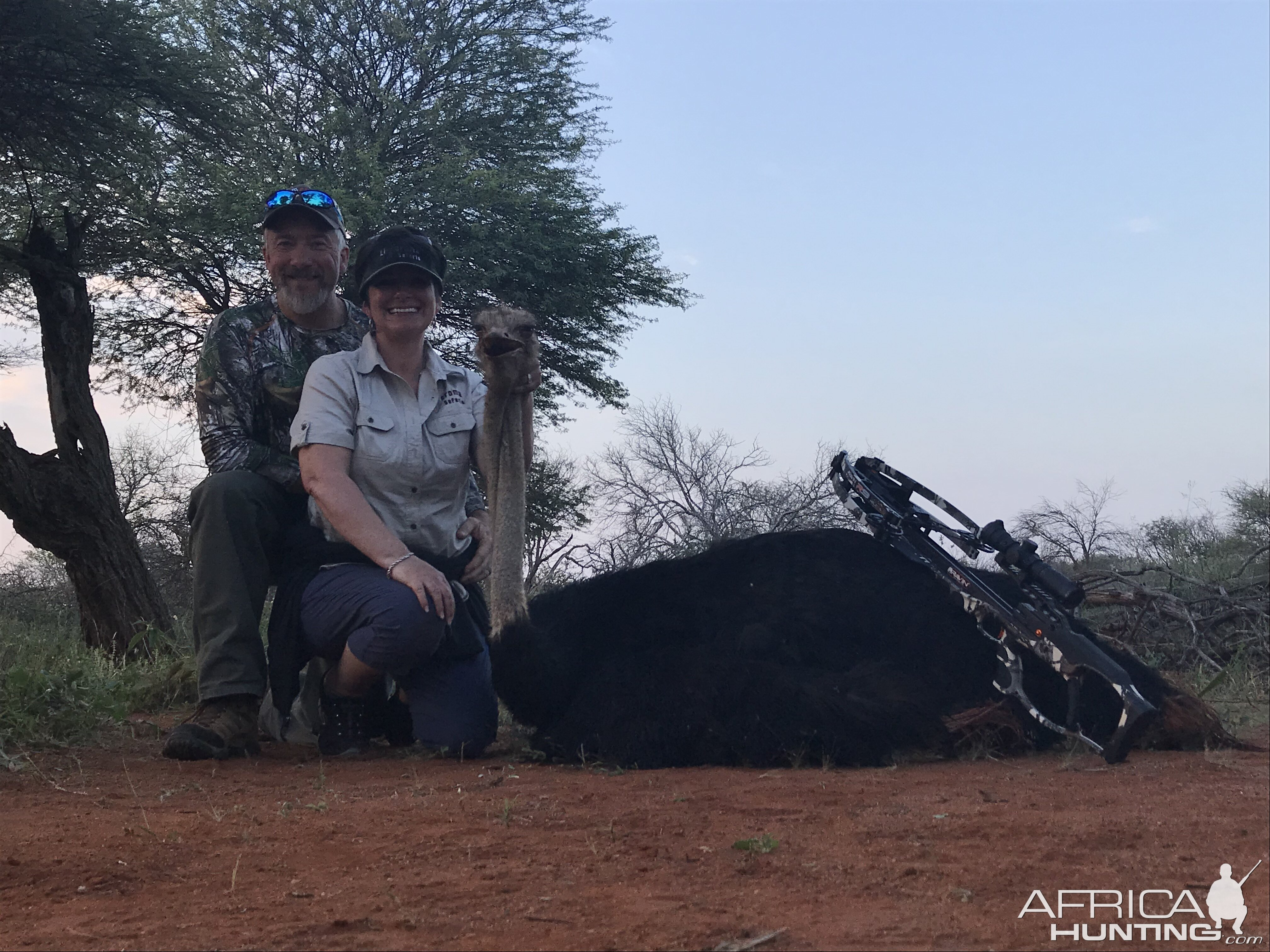 Ostrich Crossbow Hunting in South Africa
