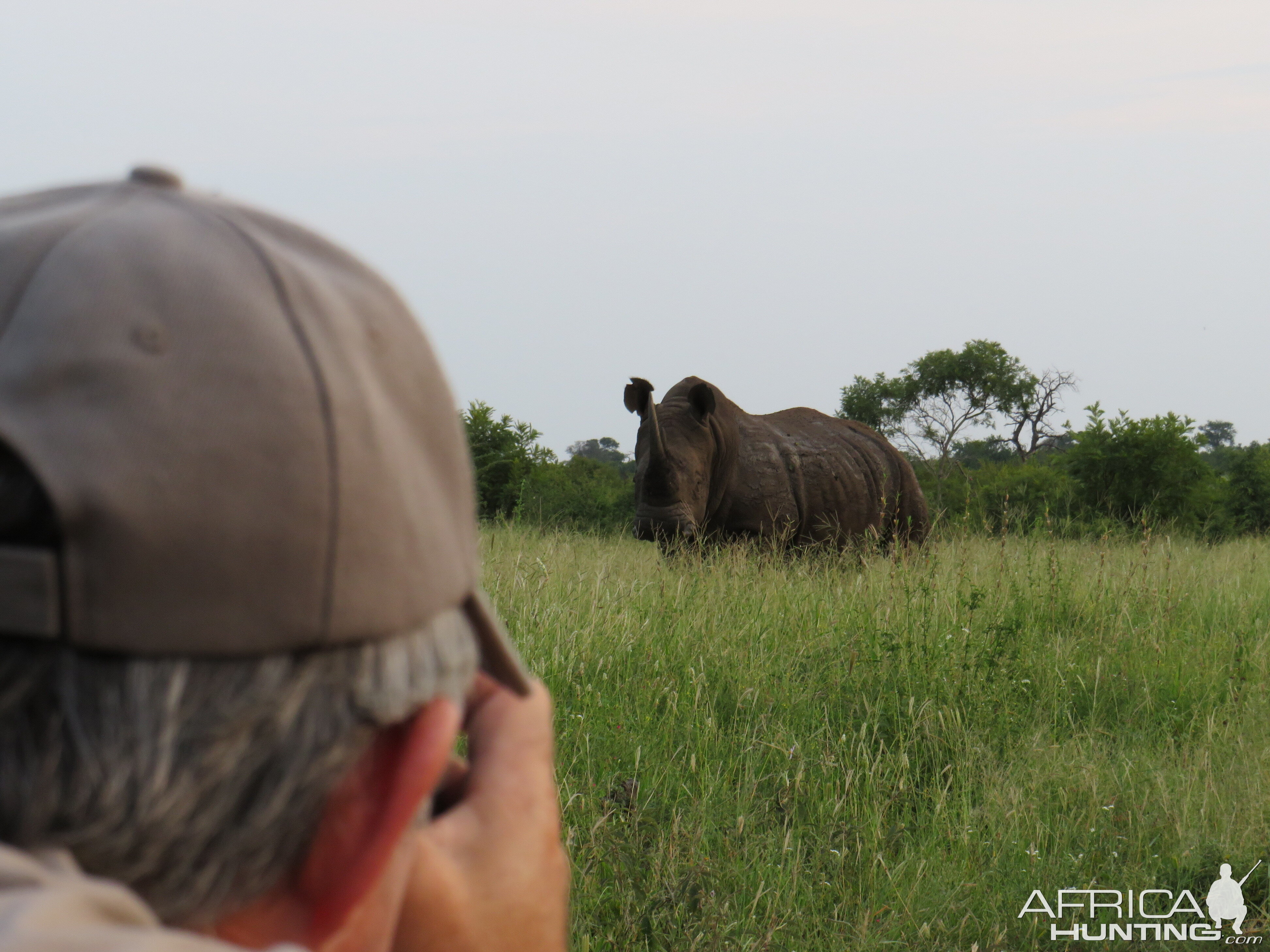 Rhino Game Viewing South Africa