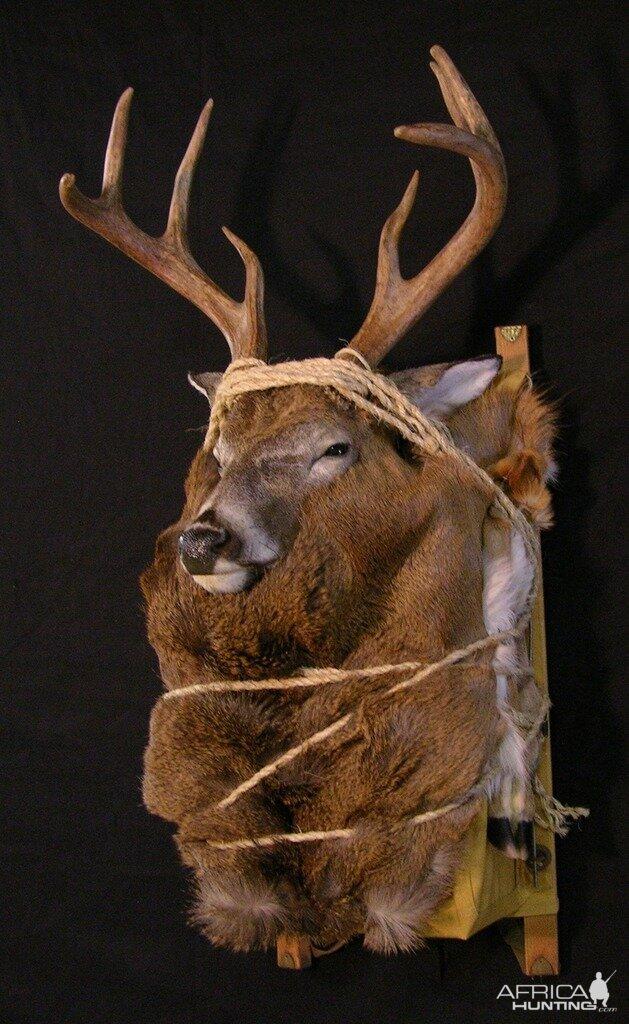 Taxidermy Backpack Mounts Deer Hunting