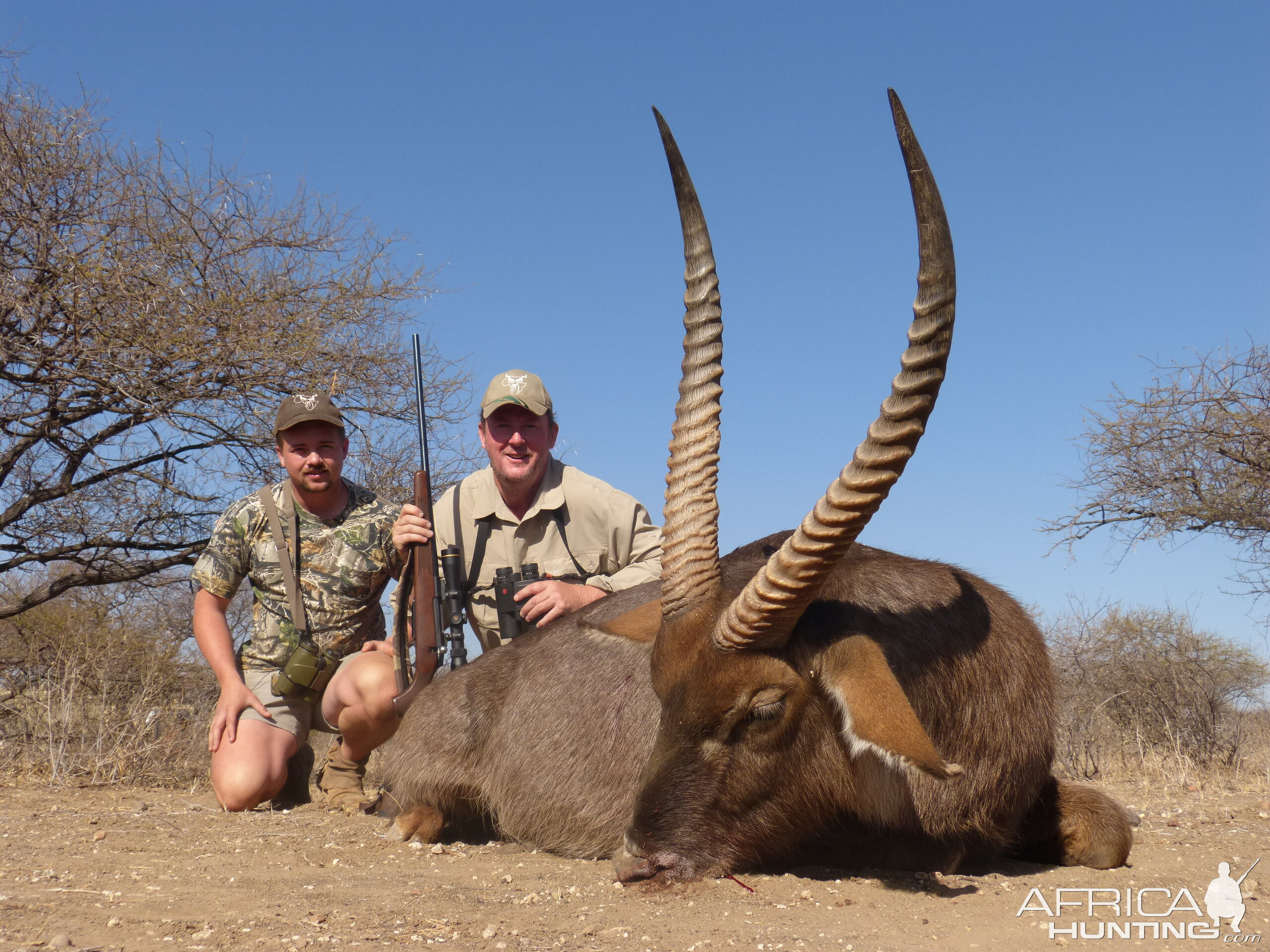 Waterbuck South Africa Hunt